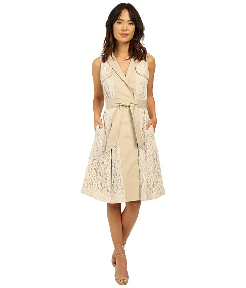 Adrianna Papell Lace Flower Mesh Dress
