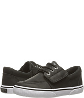 Sperry Top-Sider Kids - Ollie Jr. (Toddler/Little Kid)