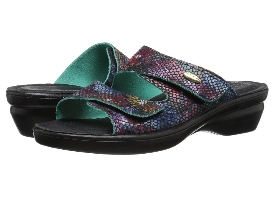Flexus Kina Black Multi Womens Shoes