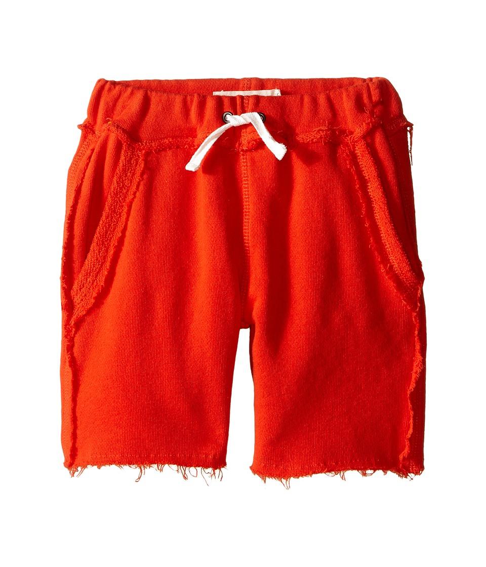 Appaman Kids Ultra Soft Brighton Pull On Sweat Shorts Toddler/Little Kids/Big Kids Orange Soda Boys Shorts
