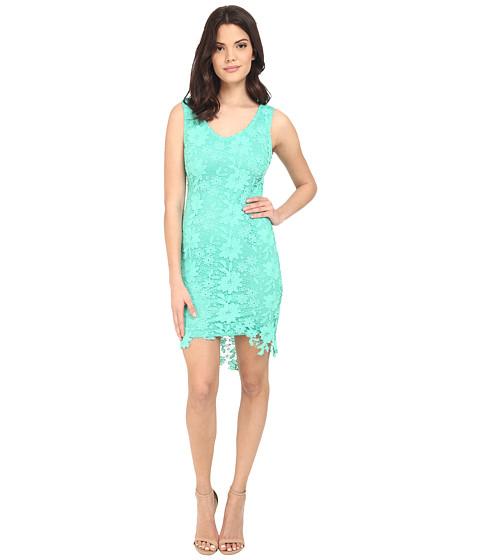 Brigitte Bailey Poppy Lace Midi Dress