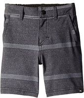 Quiksilver Kids - Stripes Amphibian Shorts (Toddler)