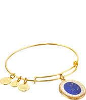 Alex and Ani - Celestial Wheel Sagittarius Constellation Bangle