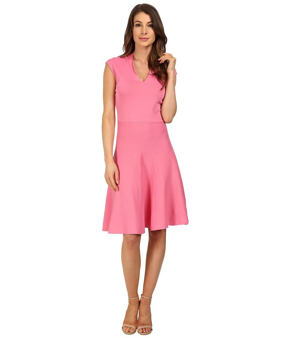 Ellen Tracy V Neck Fit and Flare Dress Azalea Womens Dress
