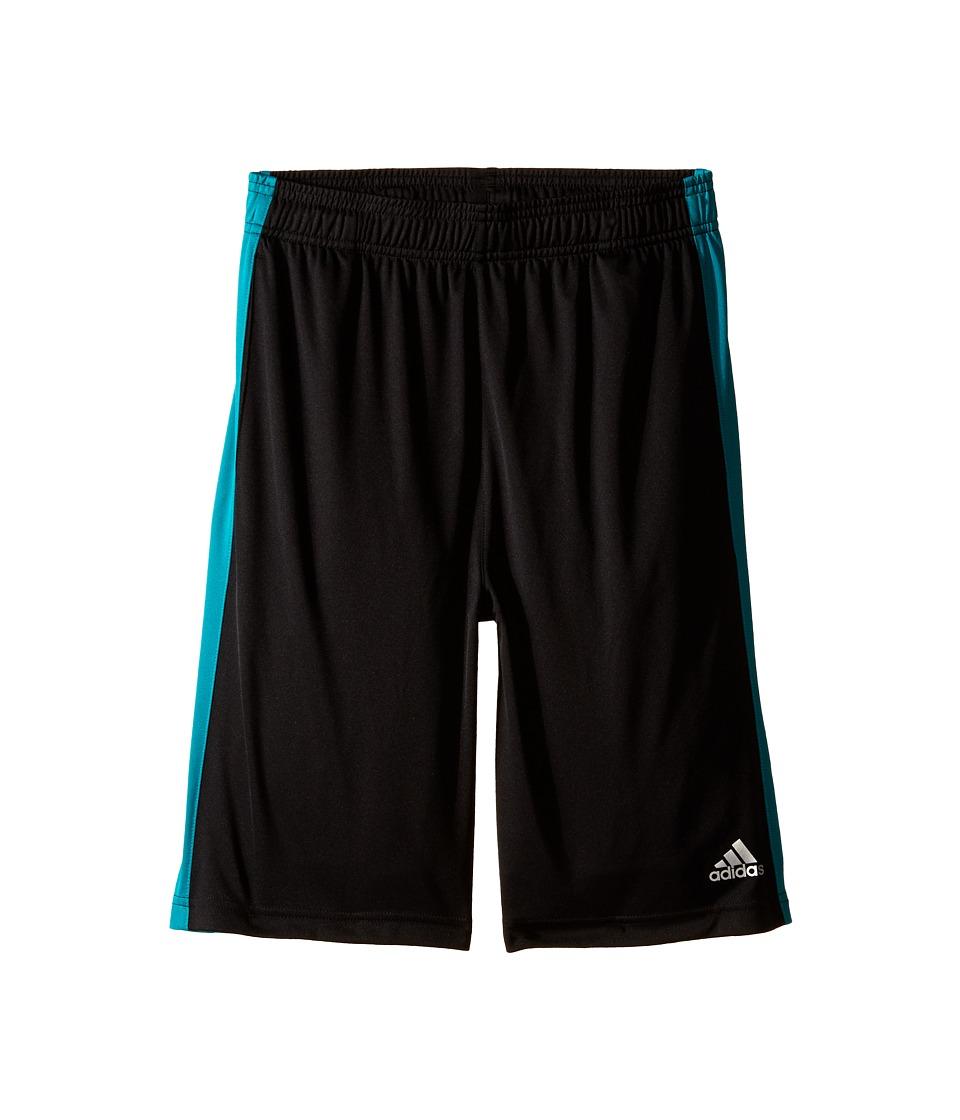 adidas Kids - Solid L Training Shorts