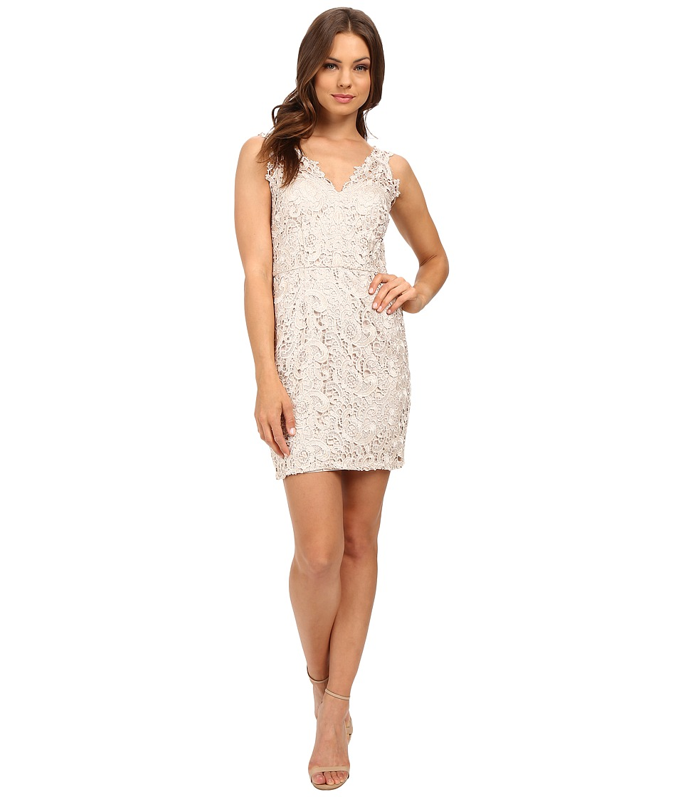 Aidan Mattox V-Neck Lace Cocktail Dress (Champagne) Women