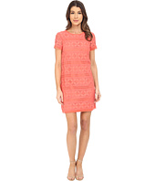 Maggy London - Petal Stripe Lace Shift