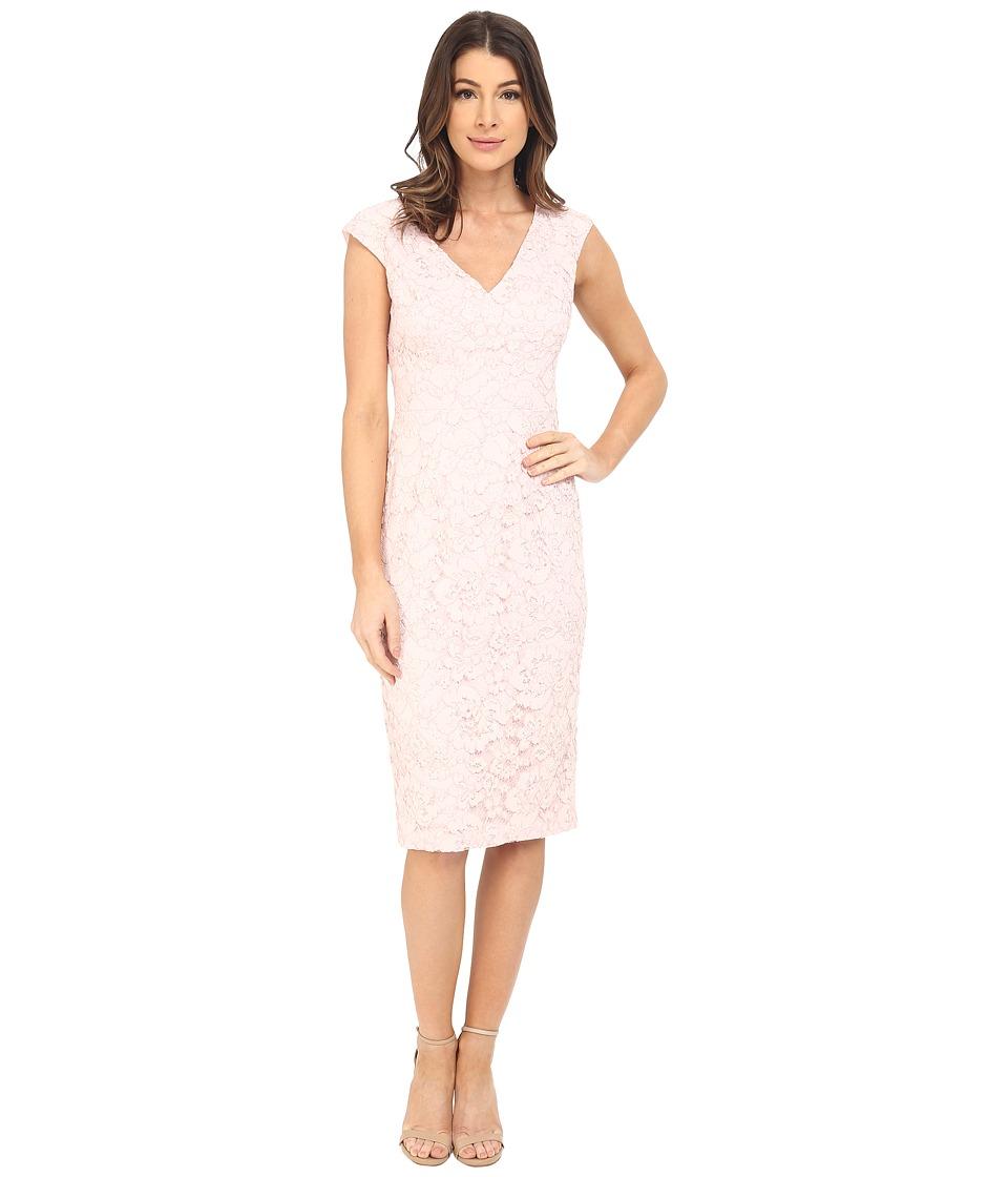 Maggy London Rose Garden Lace Sheath Powder Womens Dress