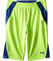 Puma Kids - Mixed Blocked PUMA® Shorts (Big Kids)