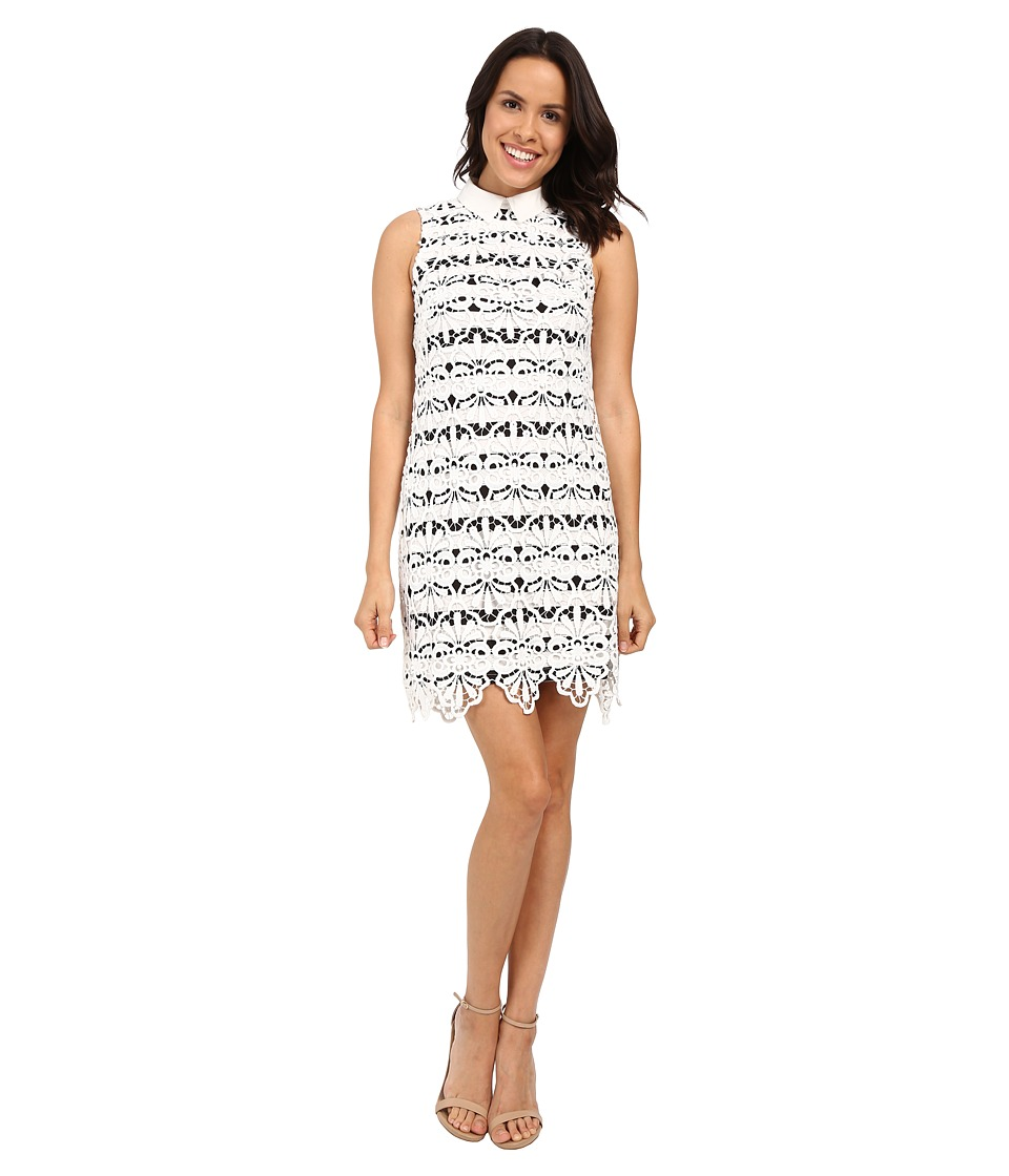 Adrianna Papell Collared Lace Shift Dress w/ Striped Lining Ivory/Black Womens Dress