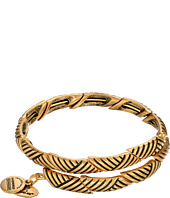 Alex and Ani - Rolling Hills Wrap Bracelet