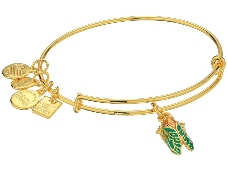 Alex and Ani Charity By Design Cicada Bracelet Rafaelian Gold Bracelet