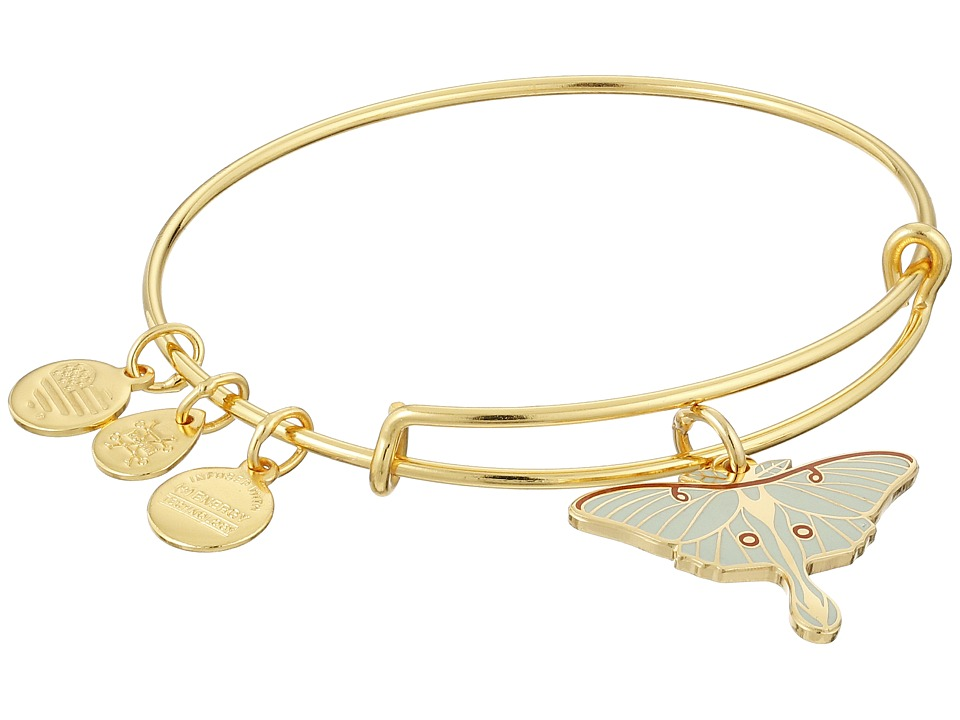Alex and Ani Luna Moth Bracelet Rafaelian Gold Charms Bracelet