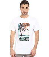 Vans - Solo Palm