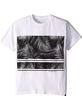 Rip Curl Kids - Palmway Custom Tee (Big Kids)