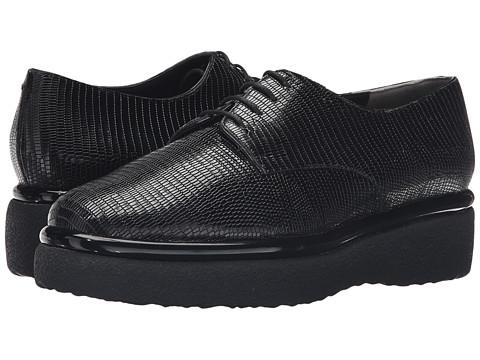 Robert Clergerie Fadio - Black Teju Print Leather