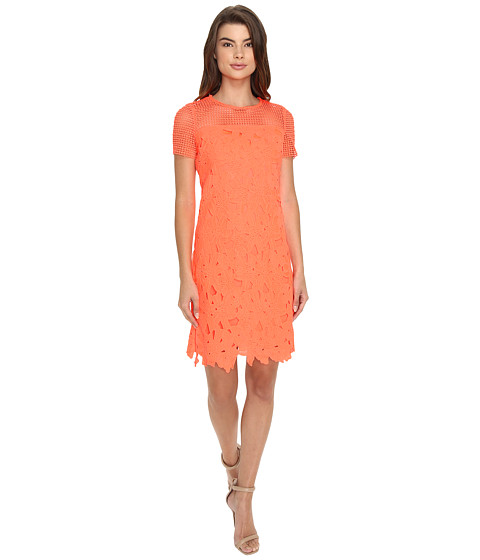 Christin Michaels Donna Chemical Lace Dress