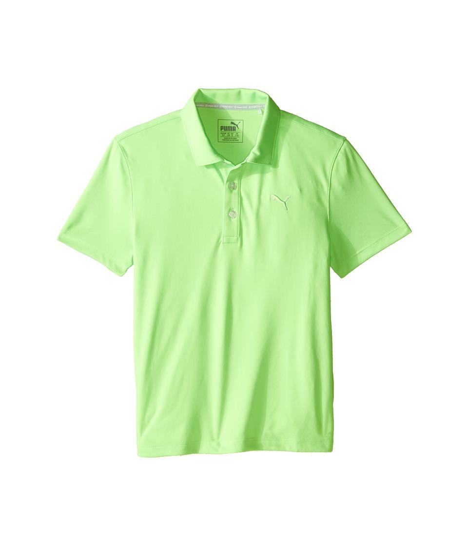 PUMA Golf Kids Essential Pounce Polo JR Big Kids Green Gecko Boys Clothing
