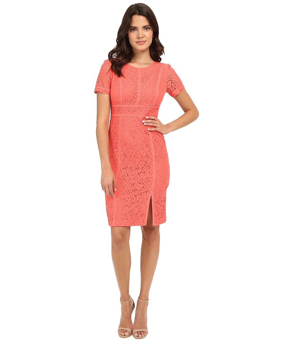 Calvin Klein Floral Lace Cap Sleeve Sheath Dress Porcelain Rose Womens Dress