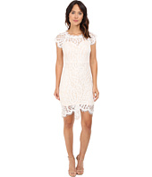 Brigitte Bailey - Abella Lace Bodycon Dress