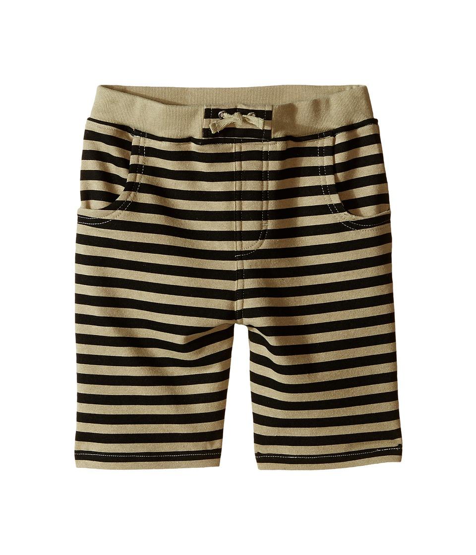 Kardashian Kids Knit Stripe Shorts Toddler/Little Kids Green/Black Boys Shorts