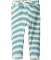Pumpkin Patch Kids - Stripe Leggings (Infant)