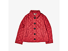 Burberry Kids Ashurst Quilted Jacket (Little Kids/Big Kids)