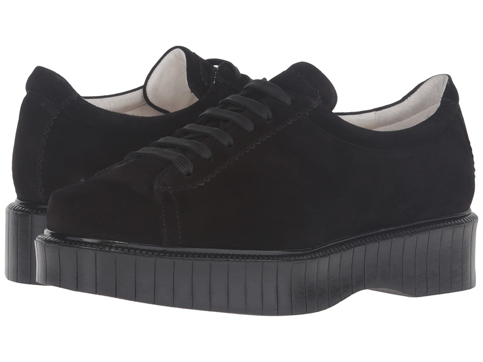 Clergerie - Pasket (Black Tam) Womens Shoes