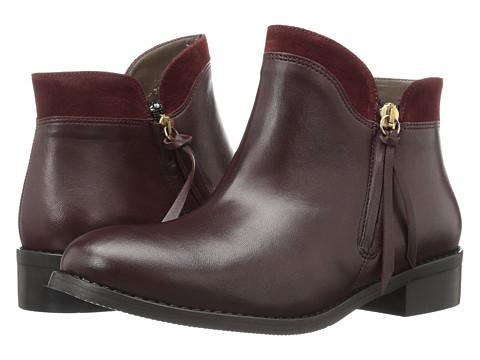 Bella-Vita Dot-Italy - Bordeaux Italian Leather/Suede