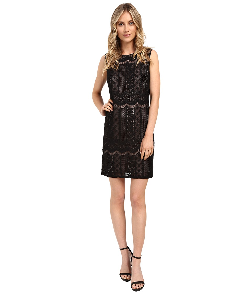 Adrianna Papell - Striped Lace Shift Dress (Black/Pale Pink) Womens Dress