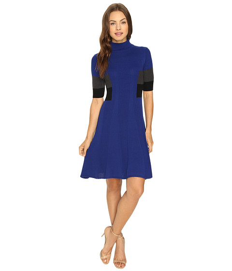 Adrianna Papell Mock Neck Color Block Flare Sweater Dress - Night Fever/Multi