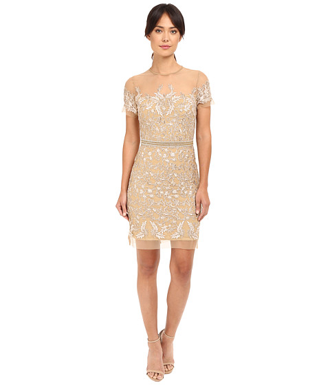 Nicole Miller Embroidered Tulle Short Sleeve Illusion Party Dress ...