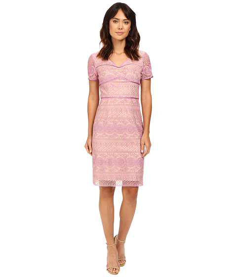 NUE by Shani Lilac Lace Dress with V-Neck and Short Sleeves