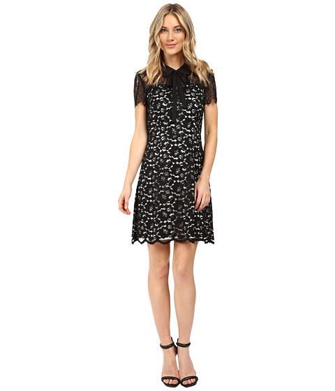 kensie Scattered Roses Dress KS0K7245