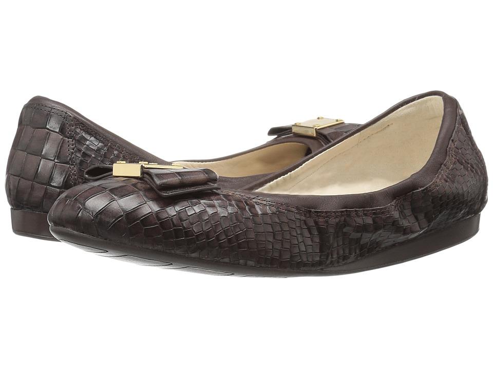 Cole Haan Tali Bow Ballet (Chestnut Croc Print) Women
