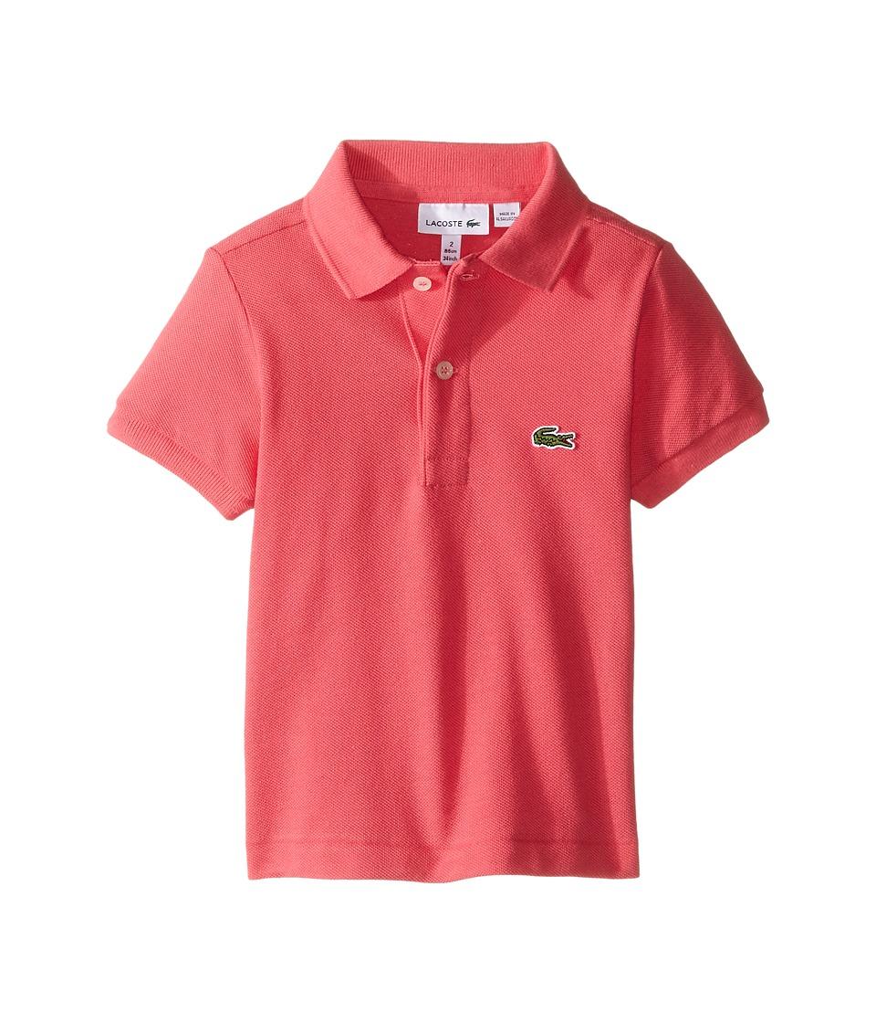Lacoste Kids - Short Sleeve Classic Pique Polo Shirt (Toddler/Little Kids/Big Kids) (Dahlia Pink) Boy