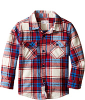 Pumpkin Patch Kids - Garnet Checked Shirt (Infant/Toddler/Little Kids)