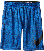 Nike Kids - Dry Aop Fly Shorts (Little Kids)