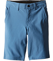 Quiksilver Kids - Everyday Amphibian Shorts (Little Kids)
