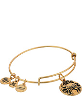 Alex and Ani - Cancer III