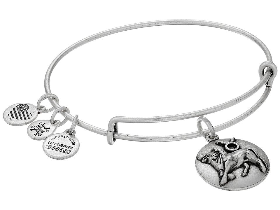 Alex and Ani - Taurus III (Rafaelian Silver) Bracelet