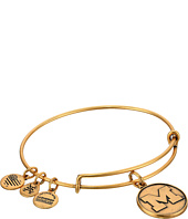 Alex and Ani - University of Michigan