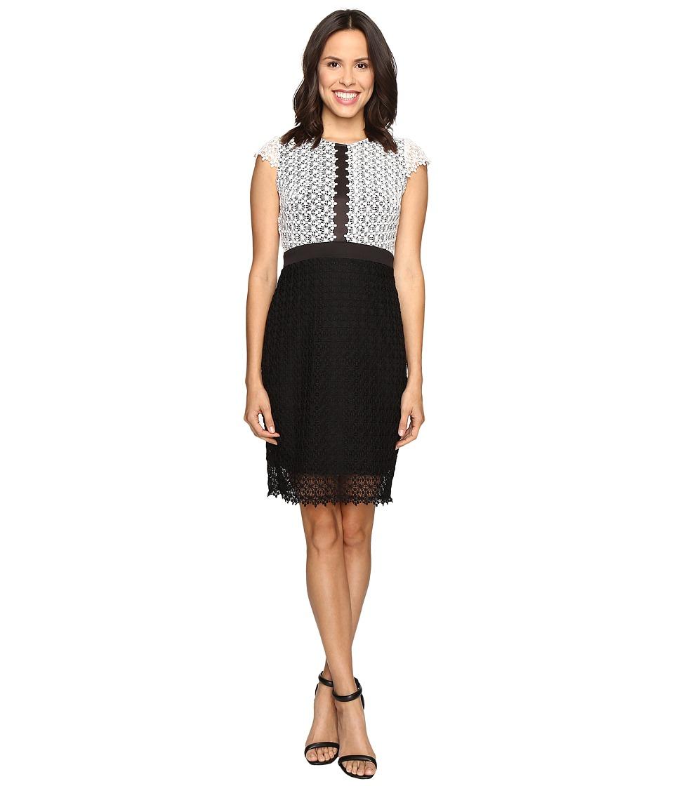 Christin Michaels Helene Color Block Lace Dress (Ivory/Black) Women