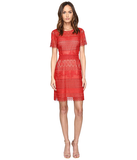 Marchesa Notte Giupre Lace Dress