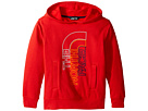 The North Face Kids The North Face Kids Logowear Pullover Hoodie (Little Kids/Big Kids)