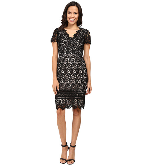 NUE by Shani Lace Dress with Trim Detail