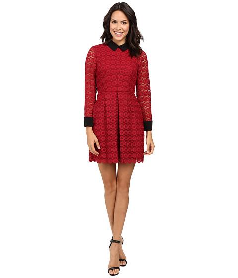 JILL JILL STUART Venice Lace Short Dress with Long Sleeves and Collar