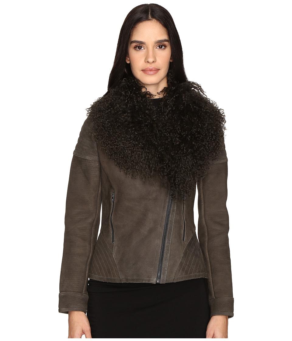 ZAC Zac Posen Hazel Mongolian Shearling Jacket (Slate Greay) Women