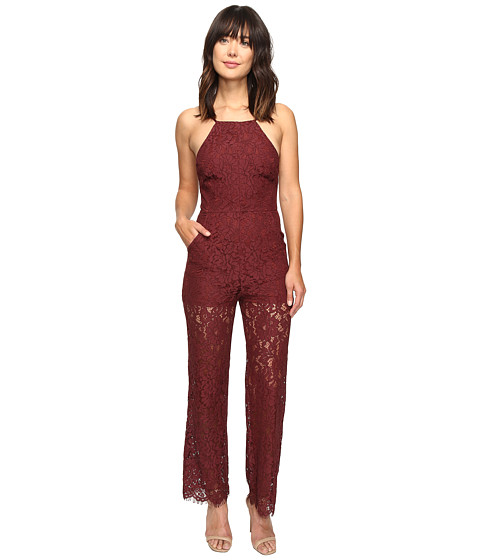 Brigitte Bailey Perrin High Neck Lace Jumpsuit - Burgundy