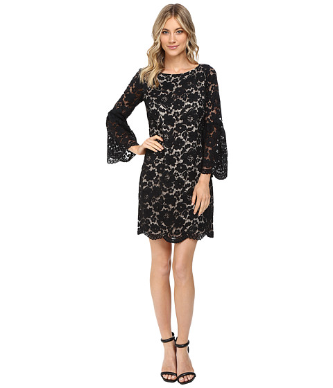 Vince Camuto Lace Shift Dress w/ Flounce Sleeve and Scalloped Hem